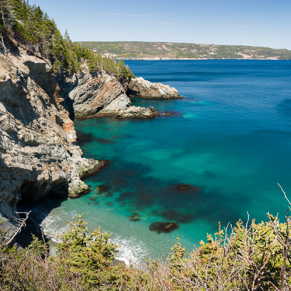 Freshwater Cove - Cape Broyle Head Path