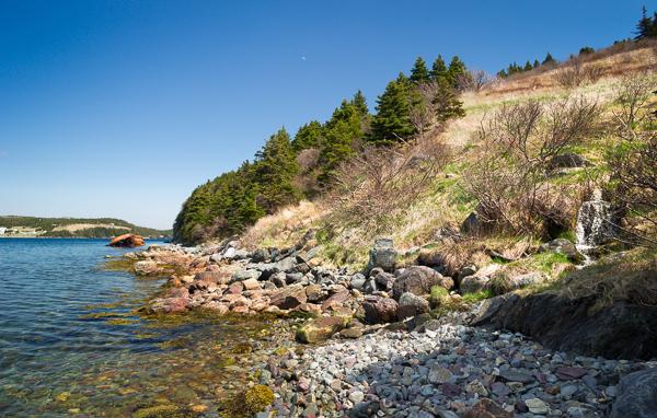 Walk down Lance Cove meadow - Bear Cove Point Path