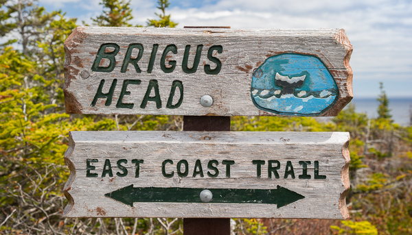Brigus Head junction - Brigus Head Path