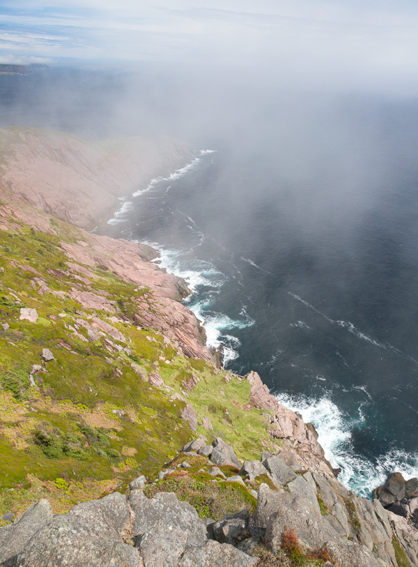 Foggy cliffs of the East Coast Trail - Cobbler Path
