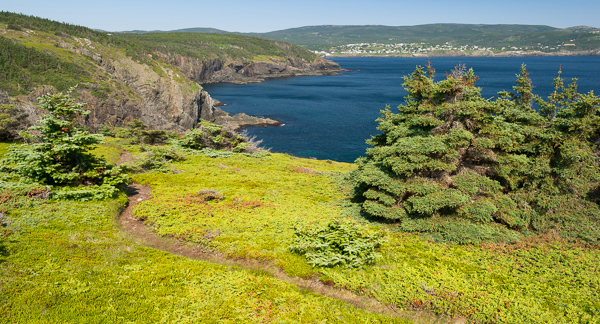 Return to Pouch Cove - Stiles Cove Path