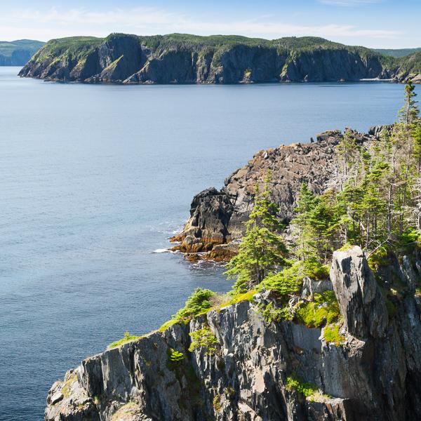 Cliffs of Brigus Head Path (in the background) - Flamber Head Path