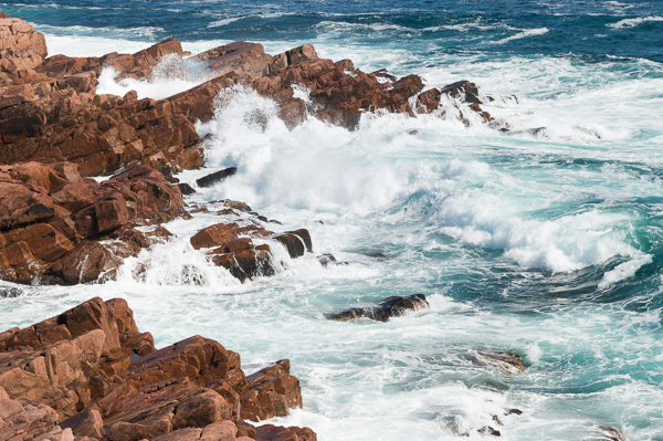 Rocky coast - Cape Spear Path