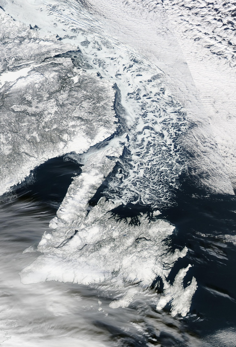 2016-01-24-nl-sea-ice