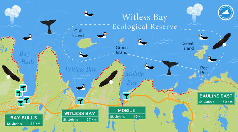Witless bay Ecological Reserve map