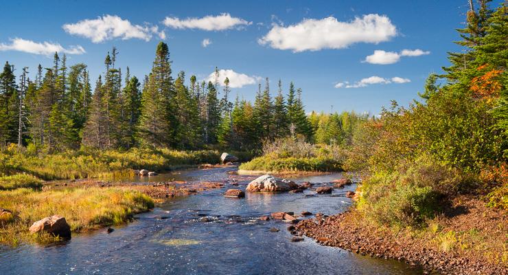 La Manche Provincial Park in fall colours