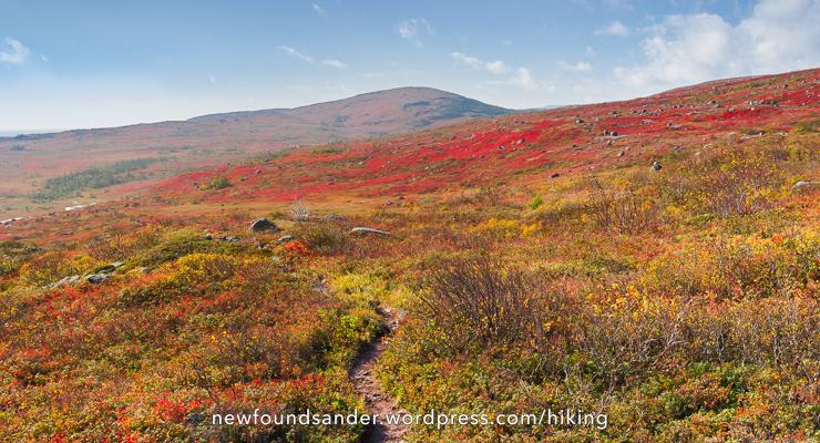 Fall on the East Coast Trail